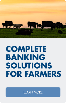 Learn about agri loans backed by local service.